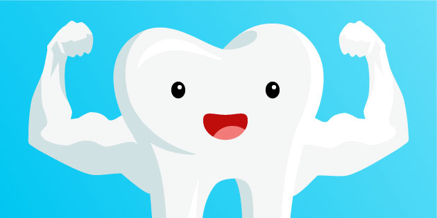 The power of the jaw the human jaw is stronger than you might think TMJ treatment dentist Oakleigh dental clinic Melbourn